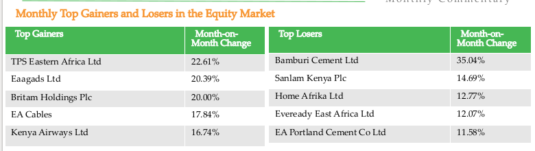 Equity Market Top Gainers and Losers - Monthly Commentary